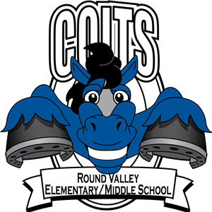 RVEMS Mascot Logo Colts
